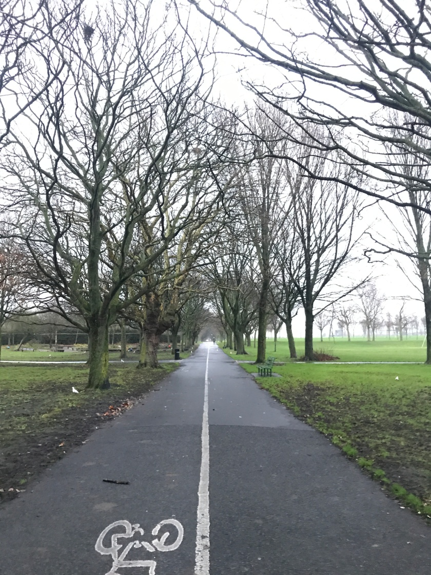 Fairview Park, Dublin